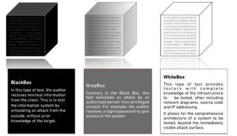 grey-box-penetration-test